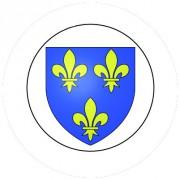 Badge 25mm Blason FRANCE