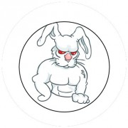 Badge 25mm Lapin