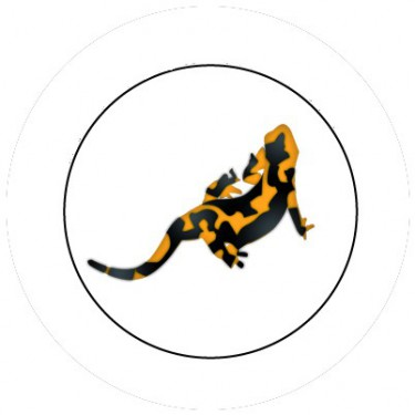 BADGESAGOGO.FR - Badge 25mm Salamandre