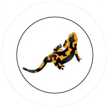 BADGESAGOGO.FR - Badge 25mm Salamandre