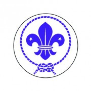 Badge 25mm scout