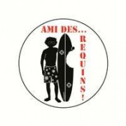 Badge ami des requins 25 mm