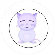 Badge 25mm Chat
